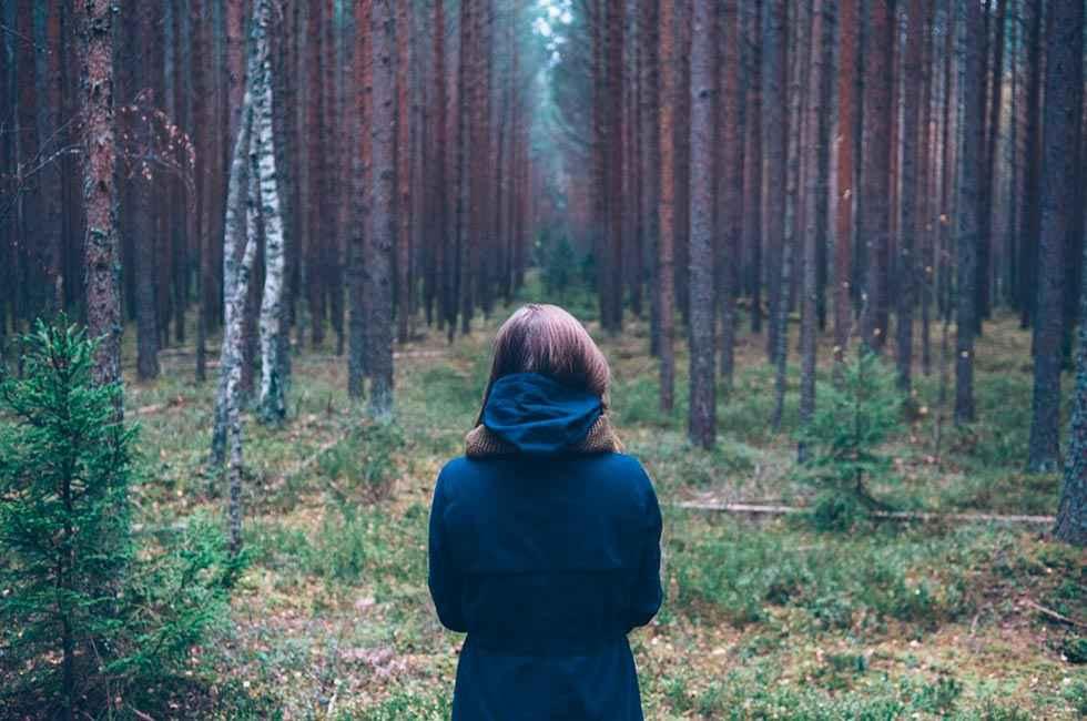 Cesefor participa en LIFE Legal Wood