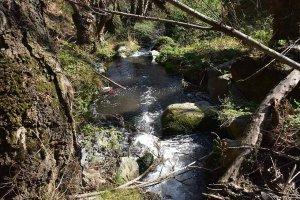 Ágreda: la ruta del Cañón del Val - fotos