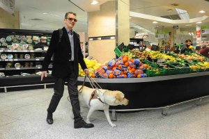 Cuarenta y cinco perros guía acompañan a personas ciegas