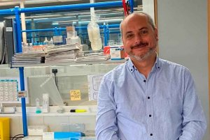 Terapia celular para el tratamiento del cáncer de ovario
