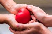 La crisis del Covid frena los trasplantes de órganos