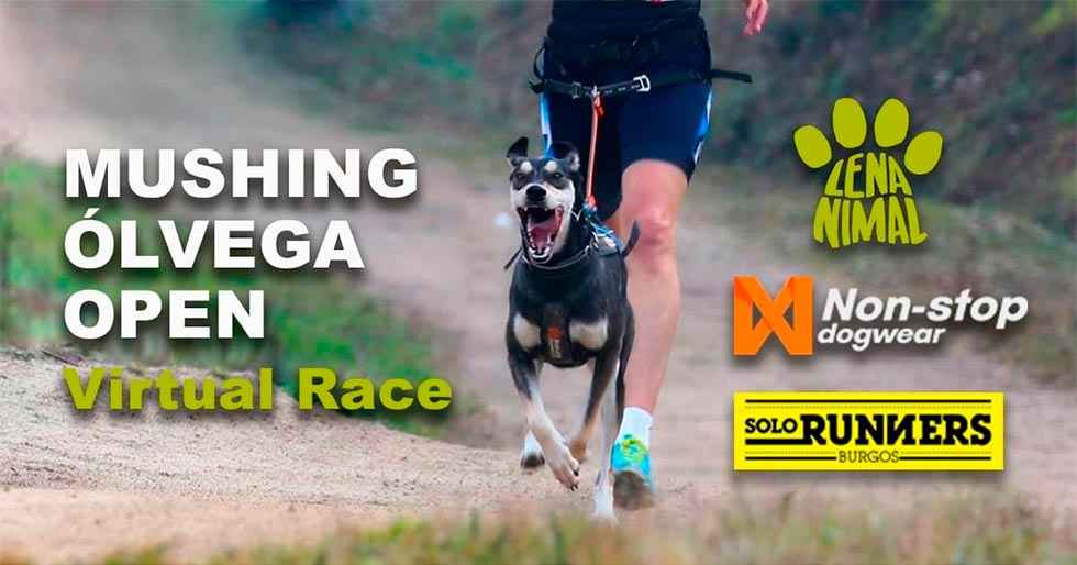 Ólvega organiza carrera virtual de mushing