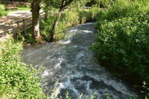Vozmediano: nacedero del río Queiles - fotos