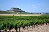 Turismo de proximidad en la Ribera del Duero