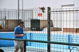 La piscina de San Andrés abre con cita previa