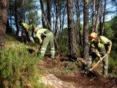 Tratamientos silvícolas preventivos en comarca de Almarza