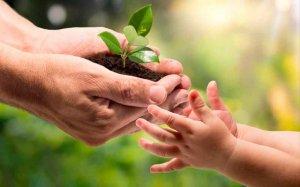IU propone debate social sobre cuidados en la vida
