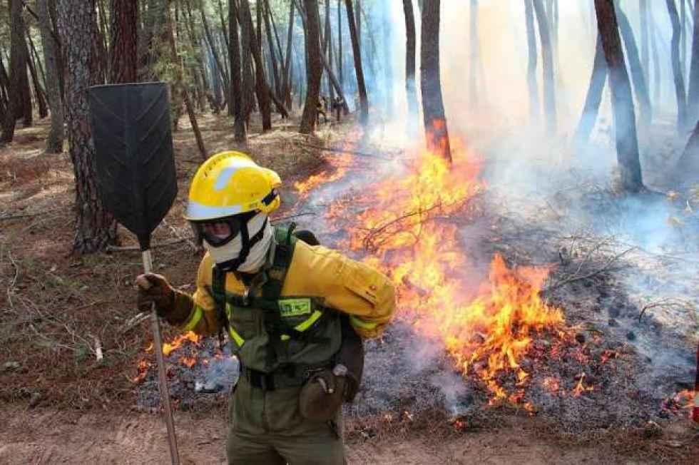 Declarada alarma de riesgo de incendios forestales