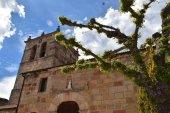 Celebración de la festividad de Santiago Apóstol