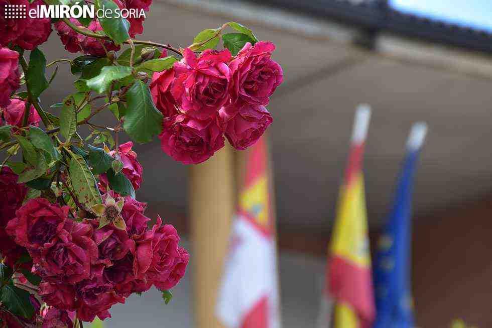Covid 19: Ocho nuevos casos en Soria