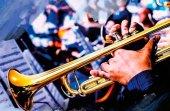 Concierto de la Asociación Musical Amigos del Burgo