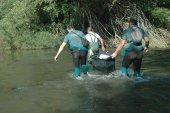 Detenidos por cultivar marihuana en isleta de río Duero