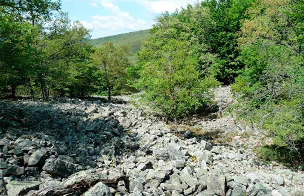 Adjudicados trabajos arqueológicos en Valdeavellano de Tera