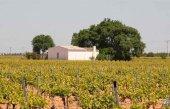 Ólvega regula la construcción de casillas agrícolas