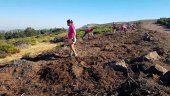 Más de 600 personas colaboran en voluntariado ambiental