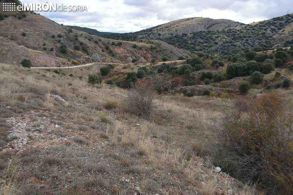 CARTA AL DIRECTOR/ Más de cinco mil firmas en el Cerro de los Moros