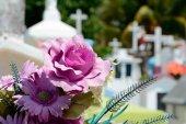Los floristas de FEC Soria evitan aglomeraciones