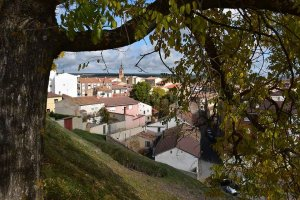 Paseo otoñal por Almazán - fotos