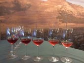 El Vino de la Tierra se amplia con más variedades