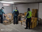 Màs de 6.900 kilos decomisados de níscalos