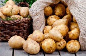 El PSOE urge promoción del consumo de patatas