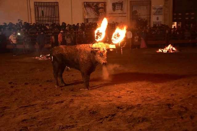 Recuerdos: Toro Jubilo de Medinaceli - fotos