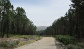 Diputación adjudica obras en cuatro carreteras