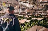 Disminuyen las detenciones por tráfico de drogas