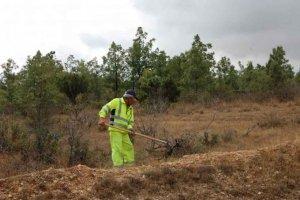 Las brigadas forestales limpian montes de 300 localidades