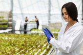El Itacyl traza hoja de ruta de investigación e innovación