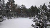 Activada fase de alerta por nieve