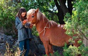 """""""Mi Amigo Pony"""", estreno en Cines Lara"""