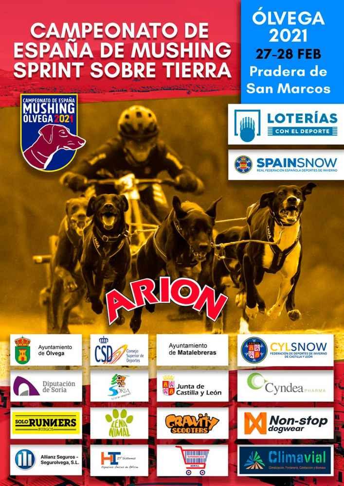 Ólvega acoge Campeonato de España de Mushing Sprint