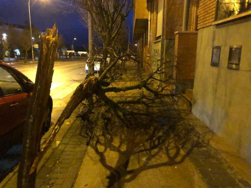 Casi 200 avisos por rachas fuertes de viento