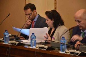 Diputación celebra su pleno ordinario de enero