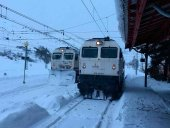 Restablecimiento gradual de los servicios ferroviarios