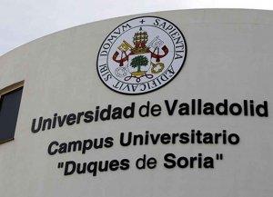Las universidades suprimen 24 másters