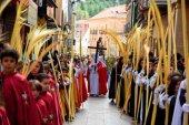 Grupo de trabajo para adaptar celebraciones de Semana Santa