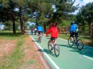 Reforma de un tramo del carril-bici