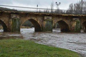 Crecida del río Tera en Garray - fotos