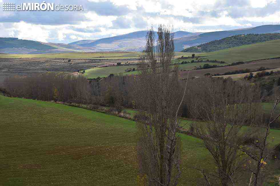 Medidas de agroambiente y clima y agricultura ecológica