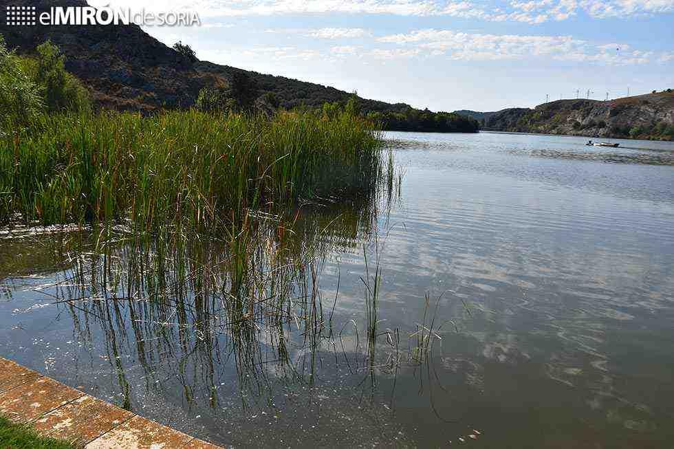 Reivindicación de la salud de los ríos