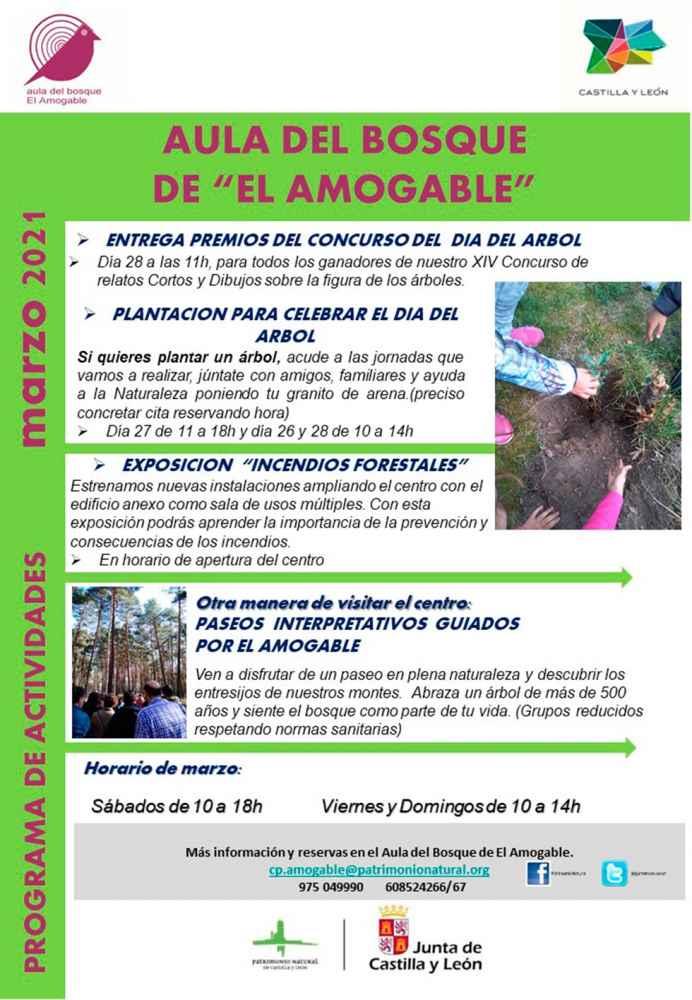 El Amogable conoce ganadores de concurso Día Forestal