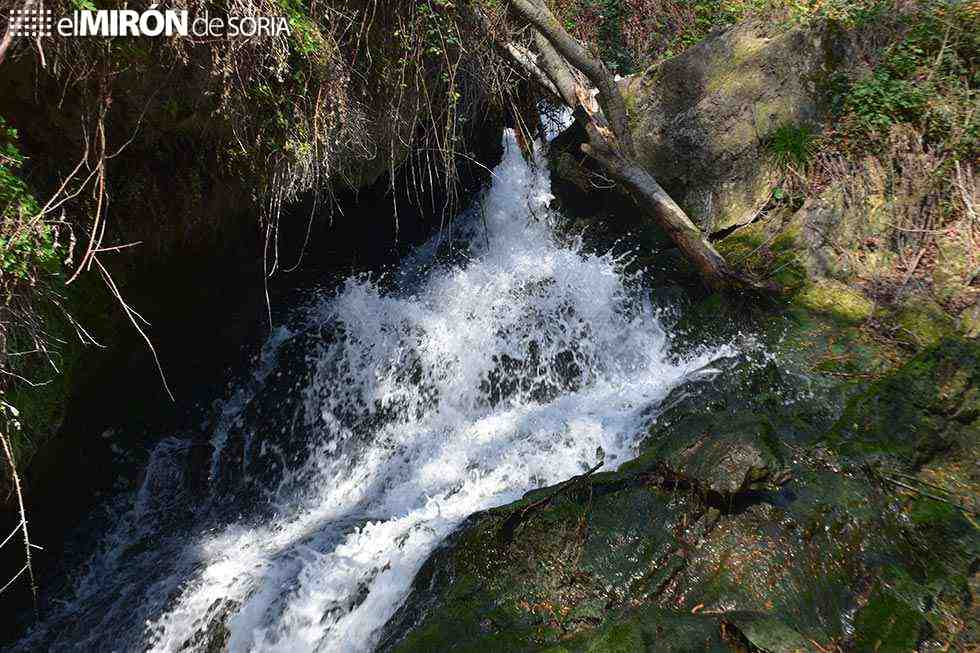 Nace asociación para proteger y defender el agua