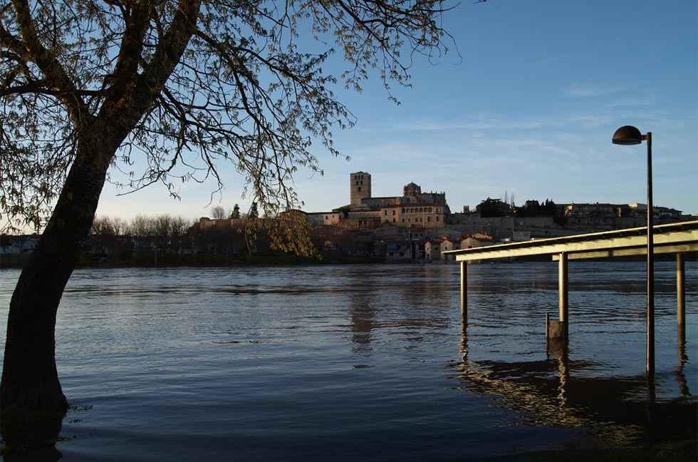 Rescatado del Duero, a su paso por Zamora