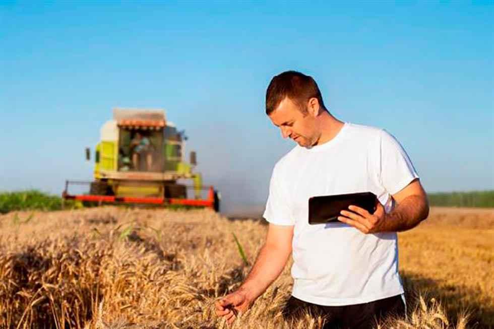 Impulso a la transición digital del sector agroalimentario