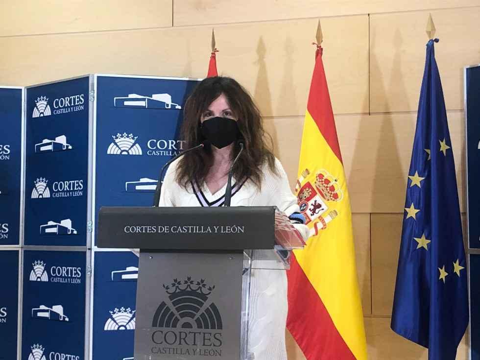 El PSOE solicita ajustes en comisiones de Cortes