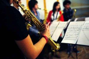 Programa de conciertos didácticos para los escolares