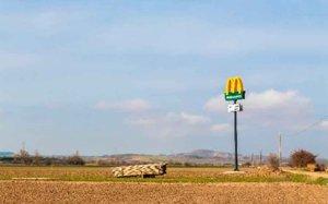 San Esteban de Gormaz aporta cereales a McDonald´s