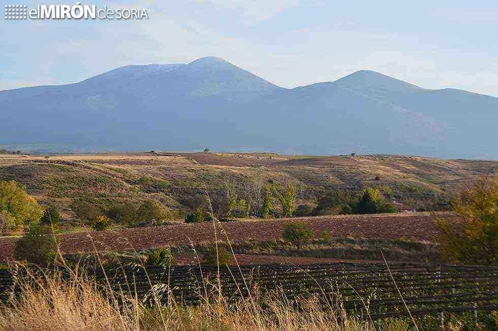 Más de 12.000 hectáreas de concentración parcelaria